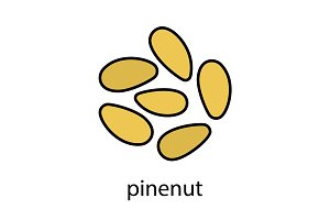 Pinenuts color icon