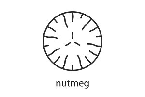 Nutmeg linear icon