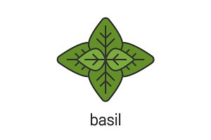 Basil color icon