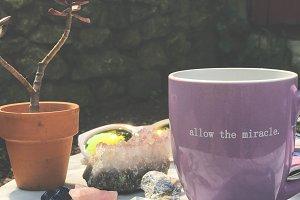 Coffe Mug, Crystals, Succulent
