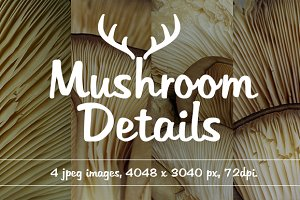 Mushroom Detail Pack