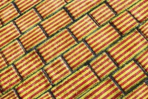 Catalunya Flag Grunge Pattern