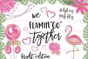 We Flamingo Together bright set