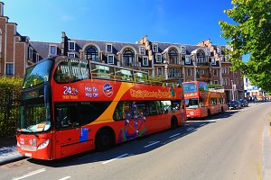 Red tourist buses
