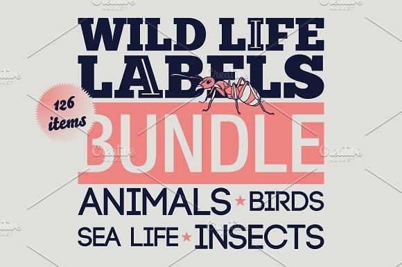 Wild Life Labels-Graphicriver中文最全的素材分享平台