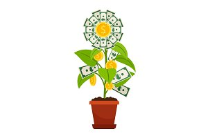 Flower money investment isolated on white background