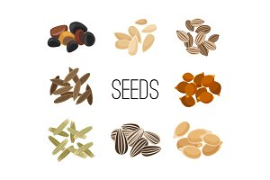 Grains and seeds isolated on white background