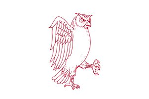 Great Horned Owl Marching Drawing