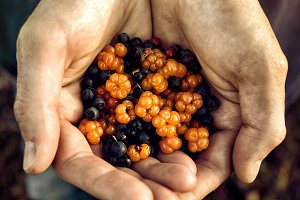 Crop hands with pile of berries