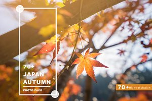70+ Hi Res Japan Autumn Photos Pack