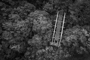 Lost Bridge Aerial