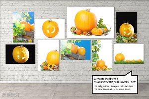 Autumn Pumpkins Photo Collection