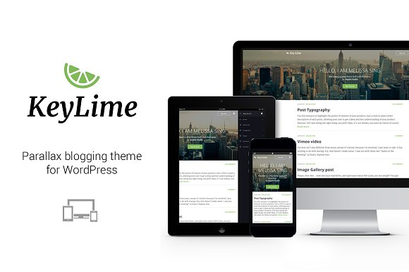 KeyLime WP - Wordpress Blog Theme in WordPress Blog Themes - product preview 1