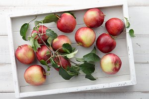 White tray with autumn apples