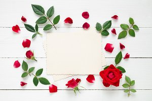 Photo frame and roses flower border.