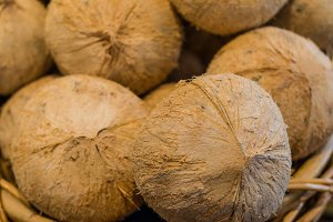 Coconuts at the market