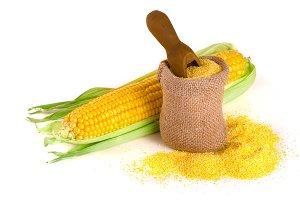 cornmeal and corncob isolated on white background