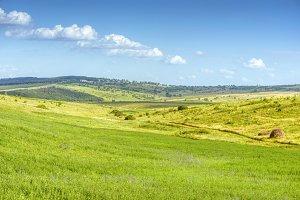 Green fields landscape blue sky