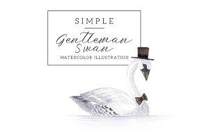 Gentleman Swan