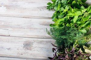 Organic fresh spicy herbs