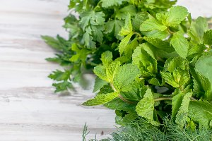 Fresh leaves mint