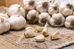 Garlic concept