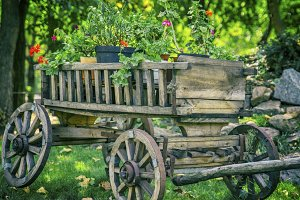 old wooden cart with round wheels