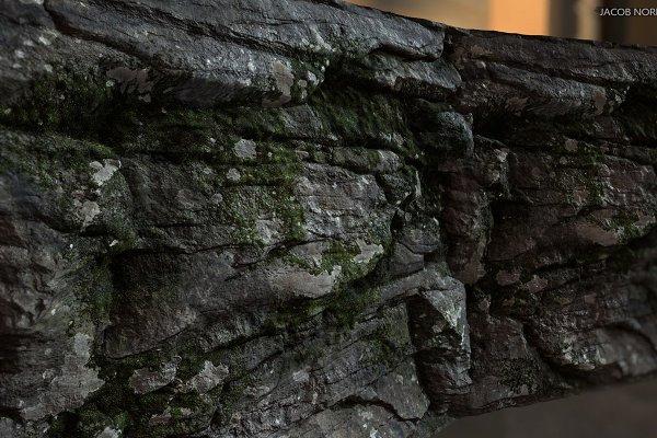 3D Organic - Textures - Rock with Moss