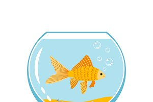 Gold fish in small bowl
