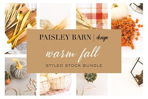 Warm Fall | Styled Stock Bundle