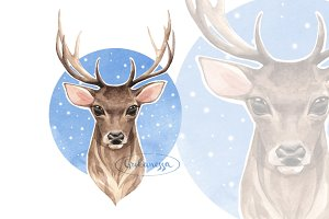 Deer. Watercolor illustration