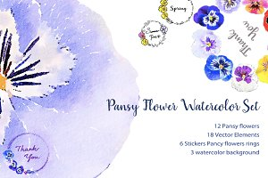 Pansy flowers watercolor set