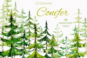 Watercolor Conifer Trees Clipart