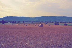 Wide farming Scenery in Germany