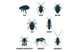 Set of insects icons. Ant and wasp, cockroach and mosquito vector illustration