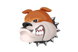 Angry bulldog face in metal collar profile view vector realistic