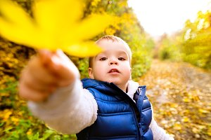 Cute little boy outside in nature, sunny autumn day