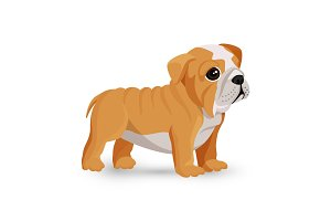 Bulldog puppy cute toy in white and beige color vector