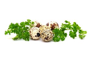 Quail eggs with parsley leaves