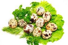Quail eggs with fresh salad