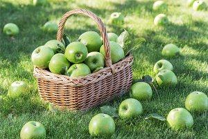 Ripe green apples in the basket