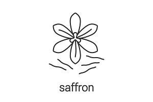 Saffron linear icon