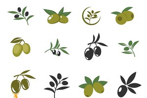 Mediterranean olive branches icons