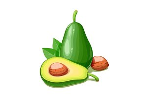 Avocado. Tropical exotic fruit.