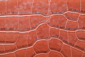 Leather texture - background