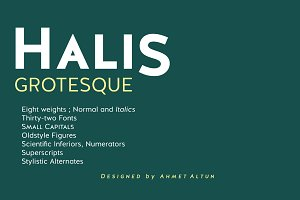 Halis Grotesque-90%off