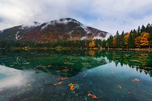 Autumn leaves dancing on the lake