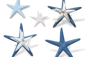 starfishes (PNG)