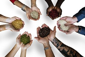 hands holding seeds (PNG)