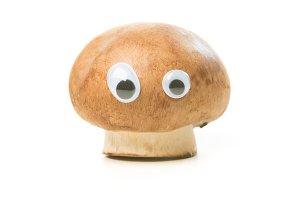 Funny Mushroom With Eyes